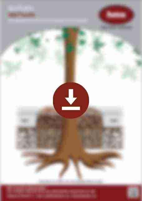 DecraStone Resin Bound Tree Pit Specification Sheet