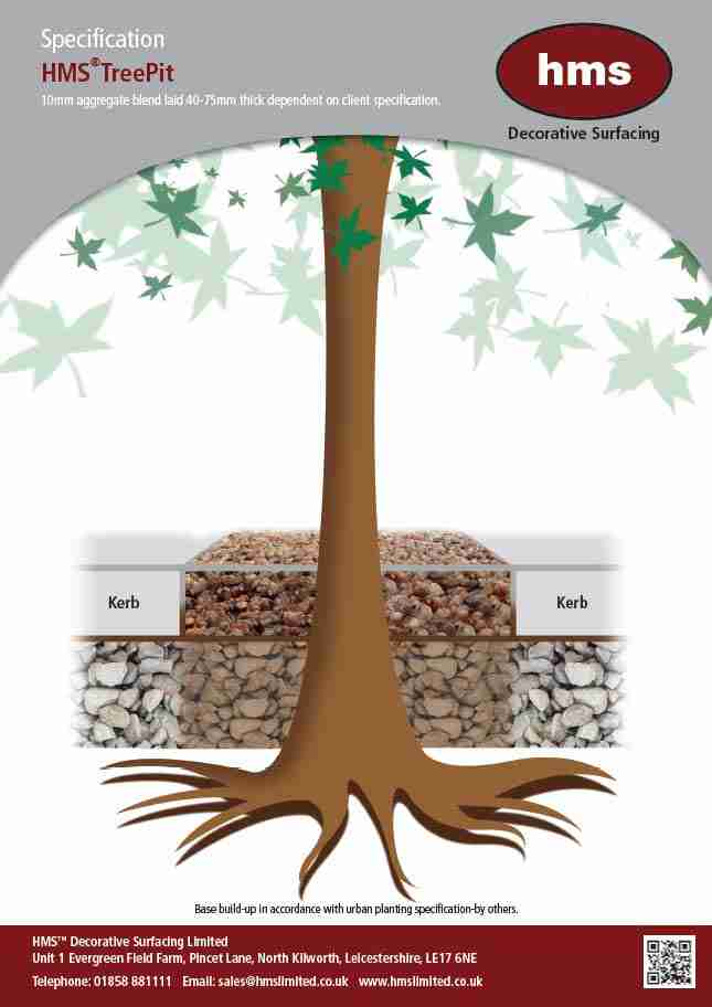 Resin Bound Tree Pit Specification